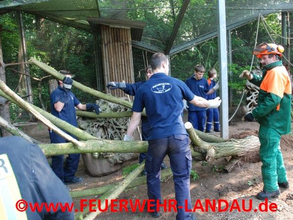 Umwelttag der Jugendfeuerwehr im Zoo