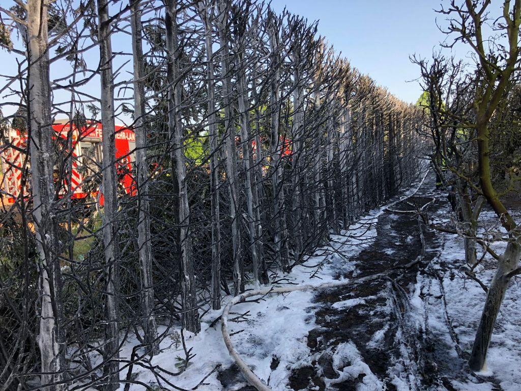 Akute Waldbrandgefahr: Feuerwehr Landau ist gerüstet
